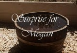 Suprise for Megan cover